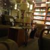 猫カフェに行ってみた!(東京編)